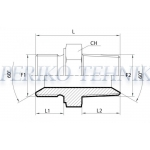 """Adapter Male BSPP-Male BSPT 3/8"""""""