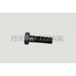 Flywheel Bolt (old type, M12x1,25) D37-1005336-B1