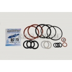 Gasket set for hydraulic cylinder z75