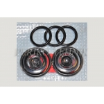 Gaz-3307 Repair Kit for Brake Pump 3500105-3307